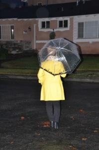 rain picture06