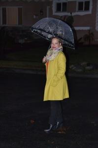 rain picture11